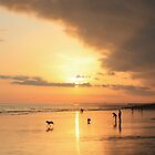 Low Tide Sunset - Hove #23 by Matthew Floyd