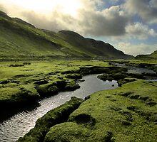 Spring in Scottish Highlands by Matt Tilghman