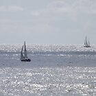 Sailing, Sailing, It's A Sailor's Life for Me! by seeingred13
