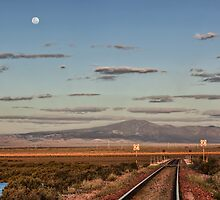 Moonrise by William Bullimore