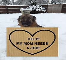 German Shepherd Help My Mom Needs A Job by LadyTrojan