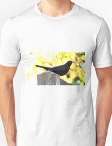 Blackbird Perching On A Fence T-Shirt