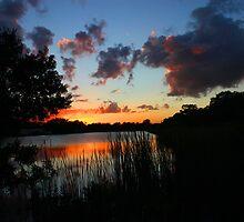 FLORIDA SUNSET by TomBaumker