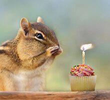 Make a Wish by Lori Deiter