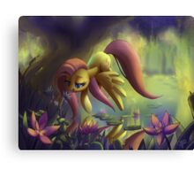 Flutter around the swamp Canvas Print