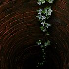 down the well... by Kristina Gale