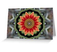 Gorgeous Orange! Greeting Card