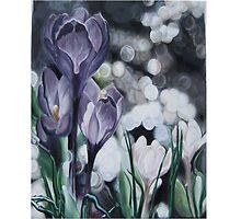 A Lavender Dream. by LubaE