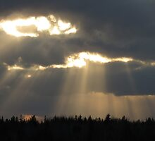 Objects in the clouds by Nicole Gushue