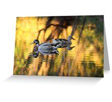 Sunset on a florida pond Greeting Card