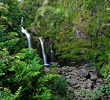 On the road to Hana by Francesco Carucci