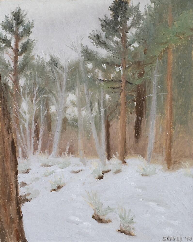 Galena Creek Forest (Plein-air Study) by seidai