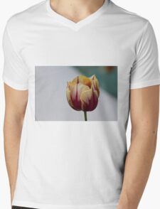 tulip in spring Mens V-Neck T-Shirt