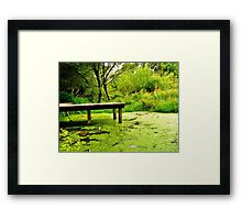 tranquil in green Framed Print