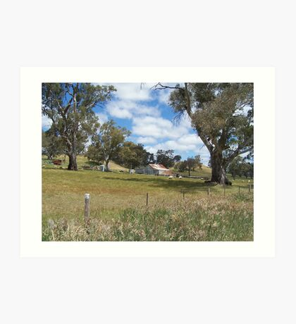 Shearing Shed in Adelaide Hills Art Print