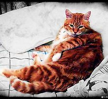 Reclining & Relaxing by Kristie Theobald