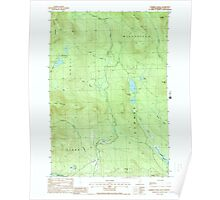 USGS TOPO Map New Hampshire NH Dummer Ponds 329542 1988 24000 Poster