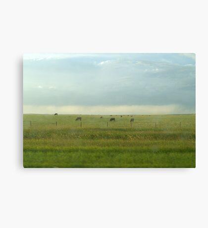 Alberta Farm Canvas Print