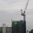 thee cranes ov Brisbane 2013 DAILY TOUR - - Day 32 by Craig Dalton