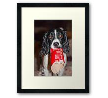 Ahh Benson - 13 months Framed Print