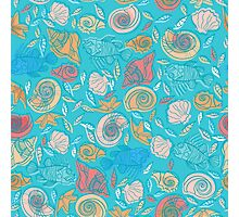 Shells and Fish Pattern Photographic Print