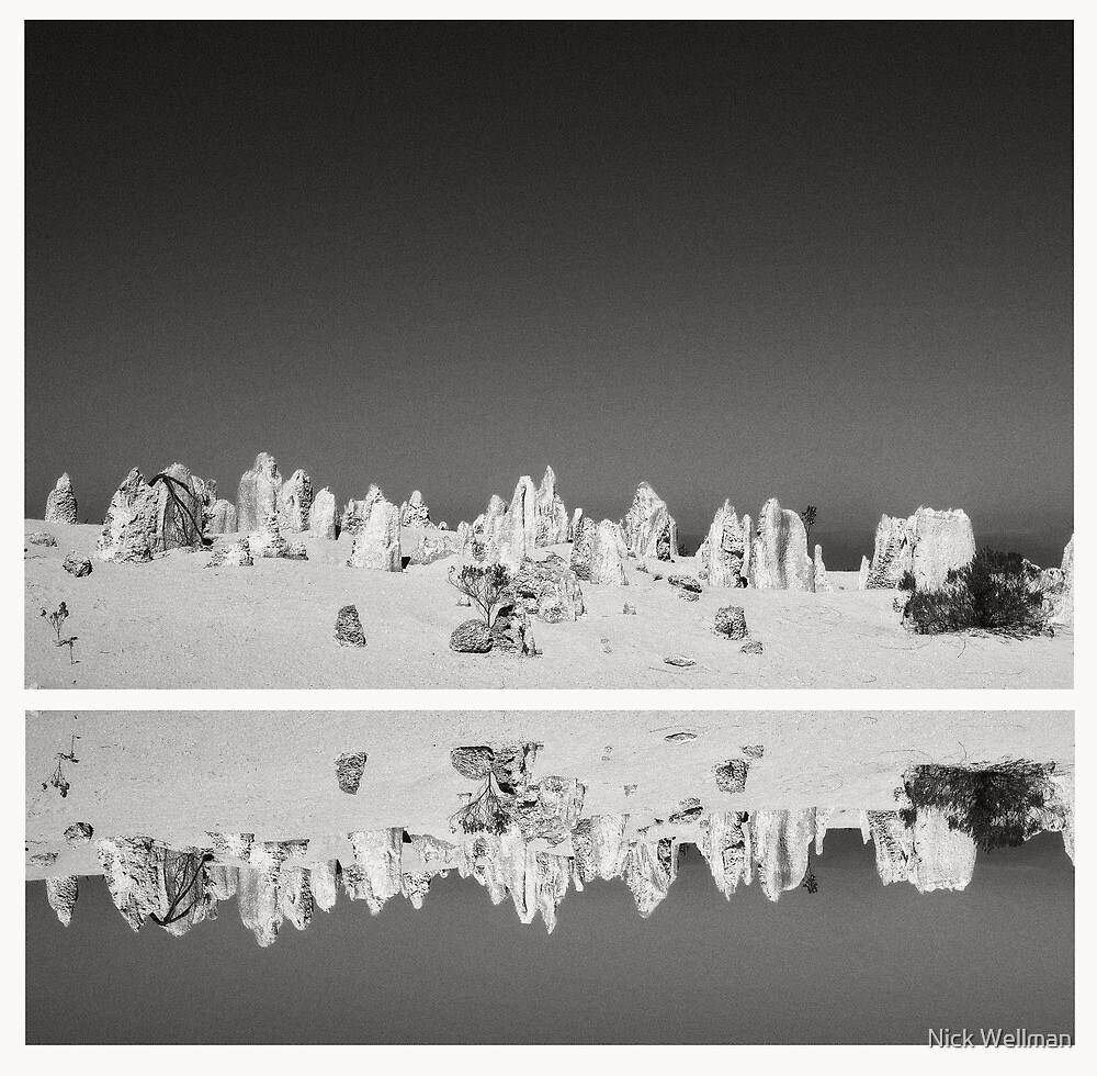 the pinnacles by wellman