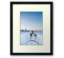 Husky Sledge, Lapland Framed Print