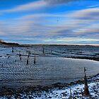 Wintery Weather by Carolyn  Fletcher