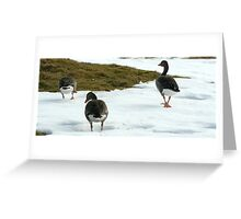waddle along  Greeting Card