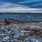 A Cold Day At The Lake by Carolyn  Fletcher