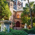 Old Church Among Palm Trees by dbvirago