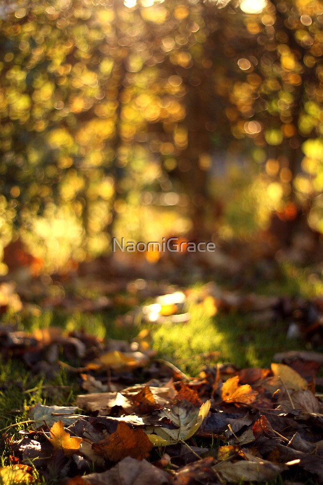 Autumn by NaomiGrace