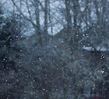 Snow by NaomiGrace