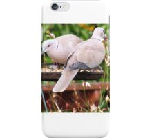 Two Doves Eating Bird Seeds iPhone Case/Skin