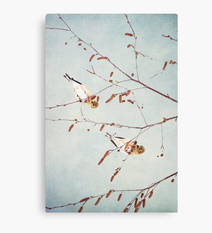 Goldfinch Gymnasts  ~ Canvas Print