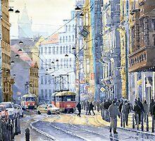 Prague Vodickova str  by Yuriy Shevchuk