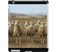 What are ewe's looking at? iPad Case/Skin