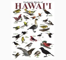 The Endemic Birds of Hawaii T-Shirt
