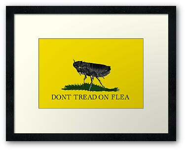 Flea Party by Paul Gitto