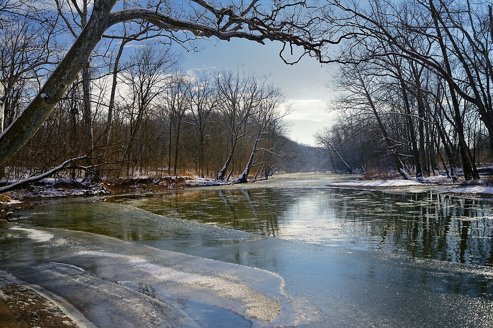 Spring's early thaw by woodnimages
