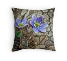 Hepatica Wildflower - Hepatica nobilis Throw Pillow