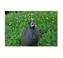 Guinea fowl friend Art Print
