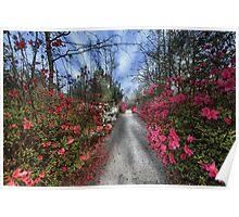 Cypress Gardens - Spring Poster