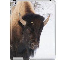 Bison Face iPad Case/Skin