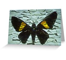 Projection 2 Greeting Card