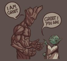 The Guardians far far away ! by Ironic