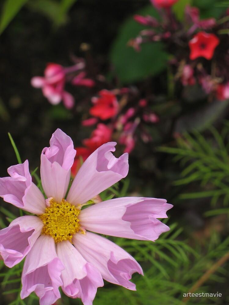 Pink and Purple by arteestmavie