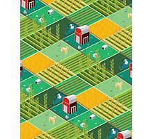 Isometric Farmlands Photographic Print