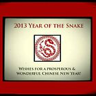 Red Snake New Year 2013 by CatalystBC