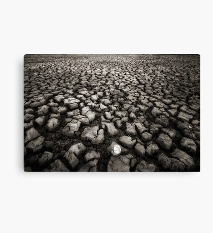 Tough Lie Canvas Print